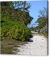 Walk To The Beach Canvas Print