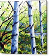 Walk To The Lake Canvas Print