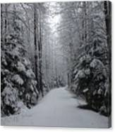 Walk With Frost Canvas Print