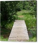Walking Bridge Over River Canvas Print