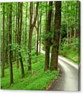 Walking On A Country Road - Appalachian Mountain Backroad Canvas Print