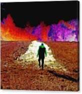 Walking Rocky's Field Canvas Print