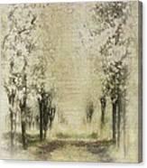 Walking Through A Dream IIi Canvas Print