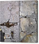 Walkways Canvas Print