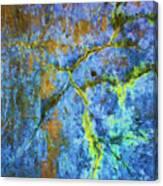 Wall Abstraction I Canvas Print