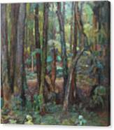 Wall Of Trees Canvas Print
