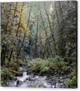 Wallace River Canvas Print