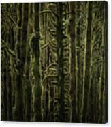 Wallpaper Trees Canvas Print