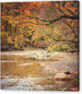 Walnut Creek In Autumn Canvas Print
