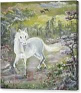 Wandering Alone Canvas Print