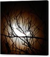 Waning Crescent Moon 2 Canvas Print