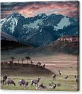 Wapiti Heaven Canvas Print