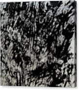 War 3 Canvas Print