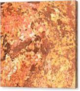 Warm Colors Natural Canvas 2 Canvas Print