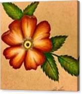Warm Flower Canvas Print