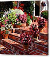 Warm Patio Canvas Print