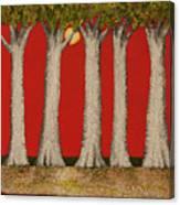 Warm Sky, Cool Trees Canvas Print