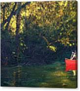 Warm Summer Shade Canvas Print