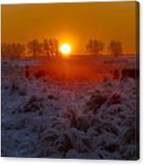 Warm Sunrise In Winter Canvas Print