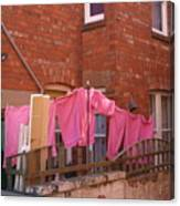 Wash Day Pinks Canvas Print