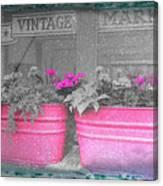Wash Tub Planters Canvas Print