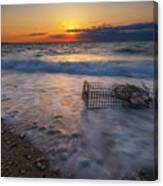 Washed Up Crab Cage 16x9 Canvas Print