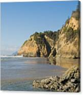 Washington Coast Canvas Print