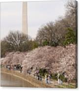 Washington Monument In Spring Canvas Print