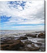 Washington Oaks Garden State Park Canvas Print
