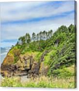 Washington State Coastline Canvas Print