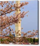 Washinton Monument In Spring Canvas Print