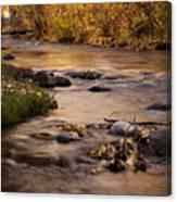Washoe Park In Autumn Canvas Print