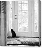 Watch Cat Canvas Print