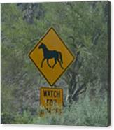 Watch For Horses Canvas Print