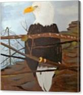 Watchful Eagle Canvas Print