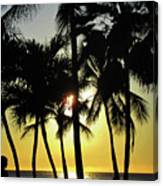 Watching The Hawaiian Sunset  Canvas Print