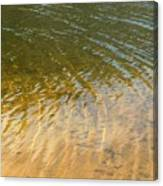 Water Abstract - 1 Canvas Print