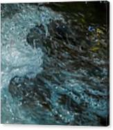 Water Art 11 Canvas Print