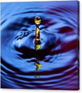 Water Art  Canvas Print