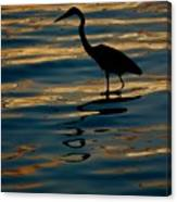 Water Bird Series 7 Canvas Print