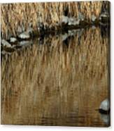 Water Colored  Canvas Print