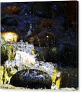 Water Dancer 4  Canvas Print