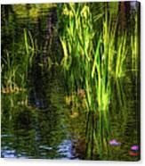 Water Dwellers Canvas Print