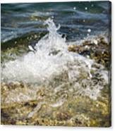 Water Elemental Canvas Print