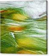 Water Flow 2 Canvas Print