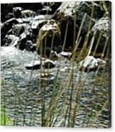 Water Flowing 2 Canvas Print