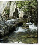Water Flowing 5 Canvas Print