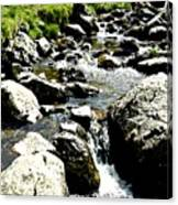 Water Flowing 7 Canvas Print