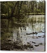 Water Garden Lake View Canvas Print