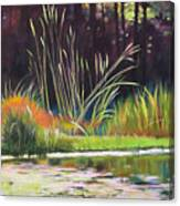 Water Garden Landscape Canvas Print